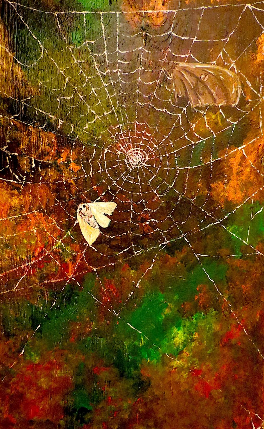 mothsinaweb
